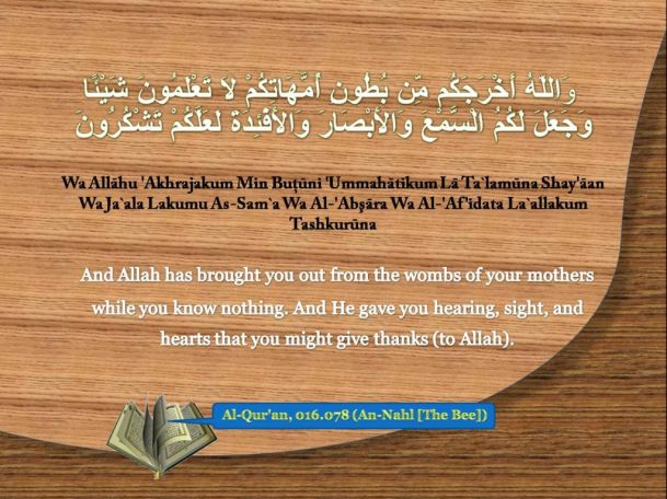 Al-Quran, 016.078 (An-Nahl[The Bee])